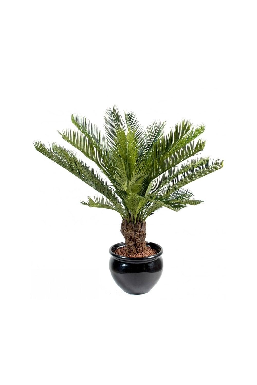 Artificial Cycas Palm 2 Sizes The Artificial Plants Shop